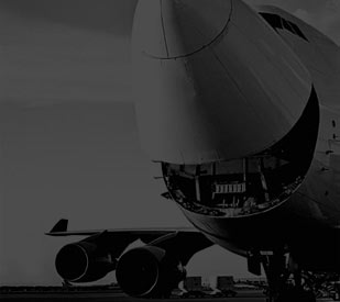 Airfreight Specialists | Calogi